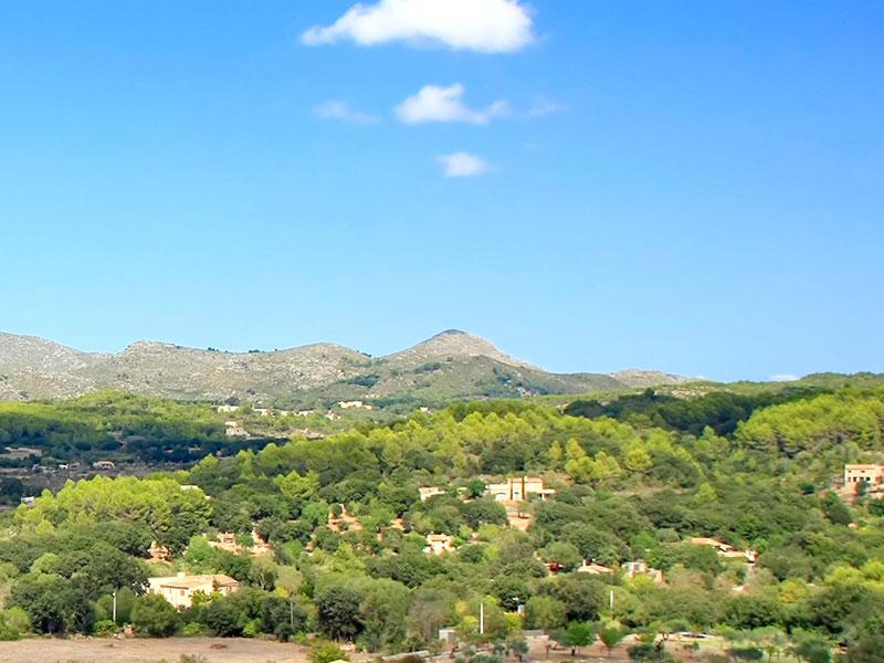 Bedarfsermittlung Immobilie Mallorca ImmobilienScouting
